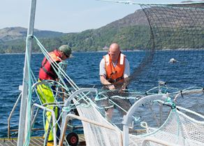 Men working at nets at Laga Bay