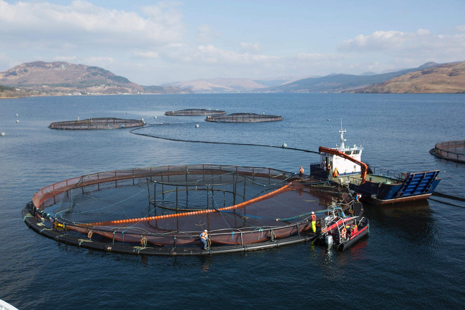 Salmon cage with boat